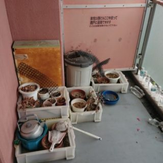 神戸市中央区 O邸 遺品整理作業